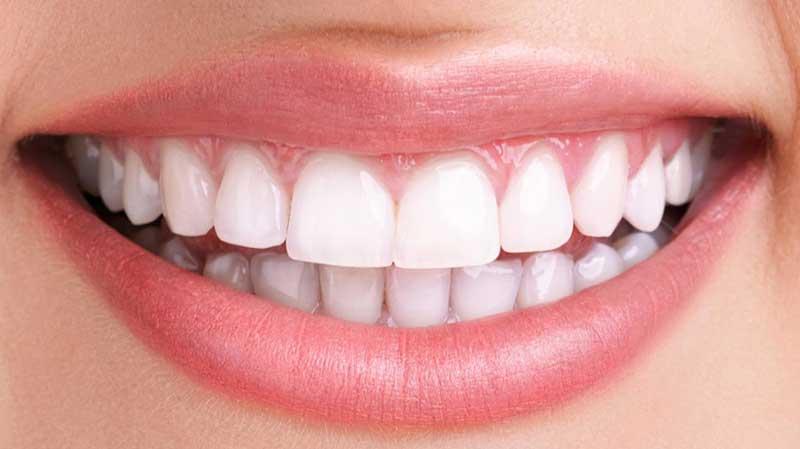 سویق سنجد و تقویت دندان
