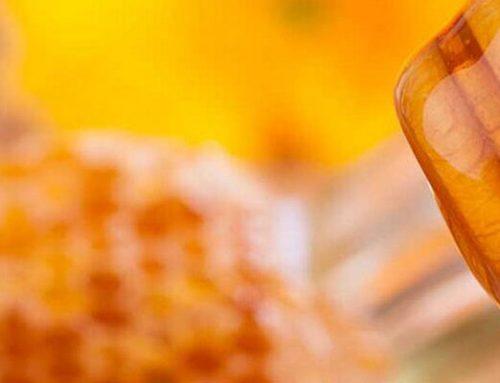 خواص عسل گون زول