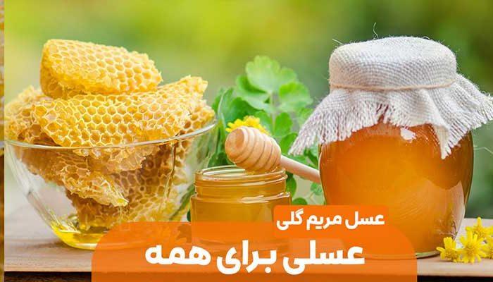 عکس سر صفحه مقاله خواص عسل مریم گلی