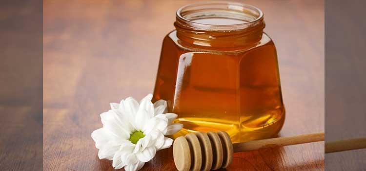 عسل بهارنارنج در مقاله انواع عسل