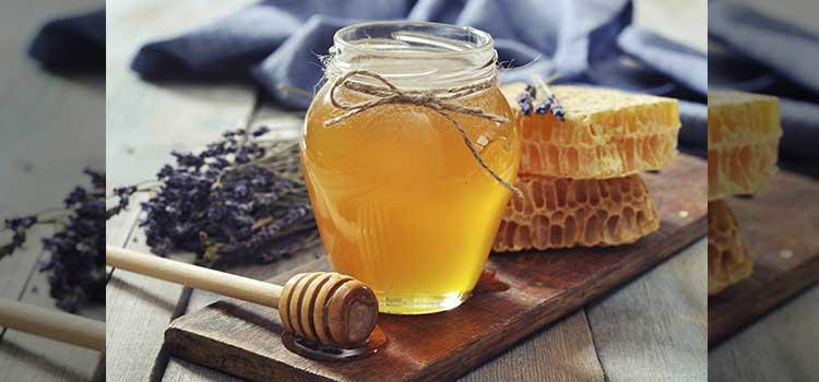 عسل گون در مقاله انواع عسل