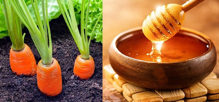 عسل هویج در مقاله انواع عسل