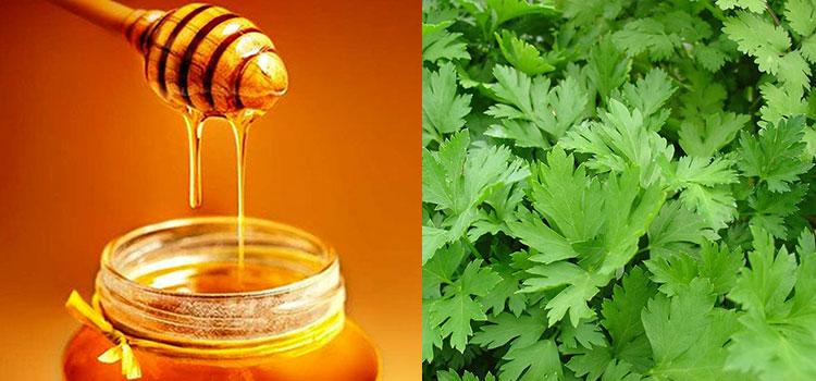 عسل جعفری در مقاله انواع عسل