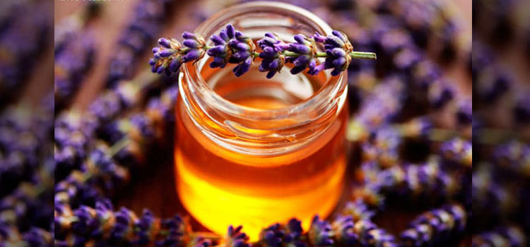 عسل اوستوقودوس در مقاله انواع عسل