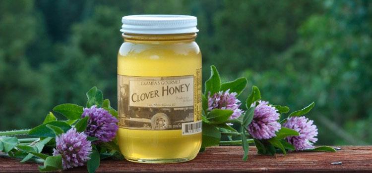 عسل شبدر در مقاله انواع عسل