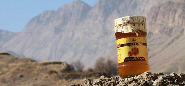 عسل کوهستان در مقاله انواع عسل