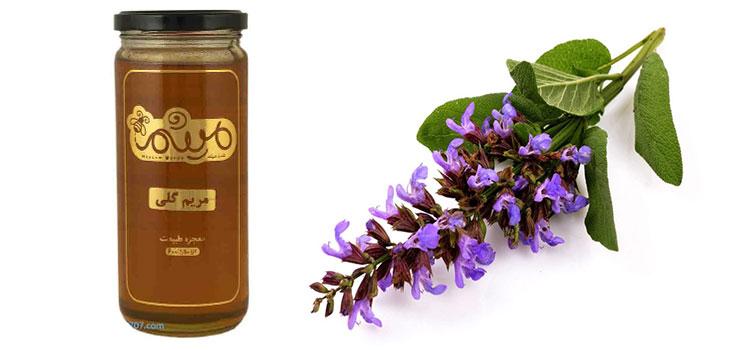 عسل مریم گلی در مقاله انواع عسل